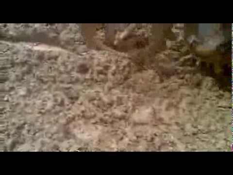 3 trihão do zumba em camacan-2013