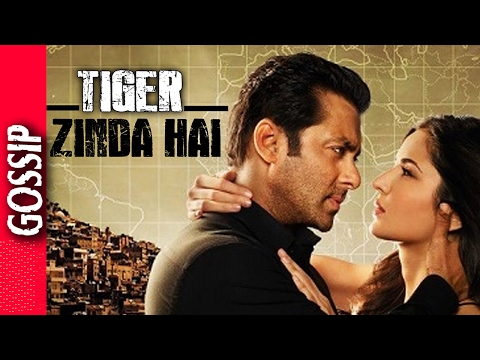 Video Tiger Zinda Hai Coustume Is Ready  - Bollywood Gossip 2017 download in MP3, 3GP, MP4, WEBM, AVI, FLV January 2017