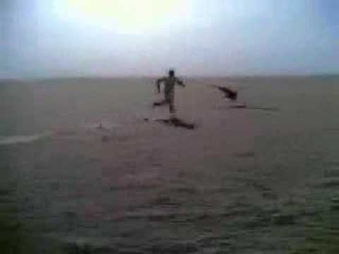 Saudi Catches Bird