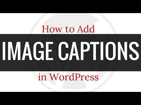 How to Add a Caption to Images in WordPress