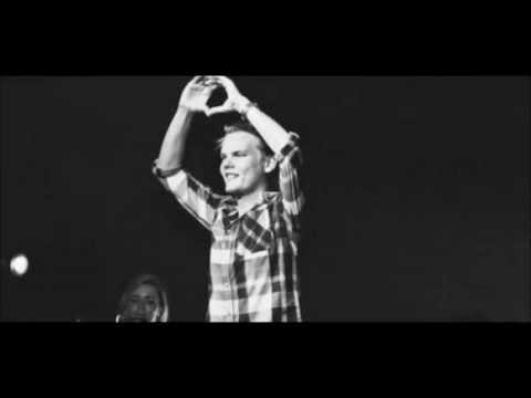 Avicii ft Aloe Blacc – Wake Me Up [HQ] Lyrics