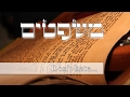 Parashat Mishpatim - How to deal with hate? - Rabbi Alon Anava