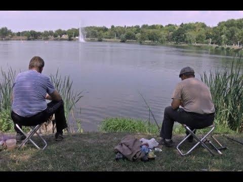 рыболовный мир в белгороде