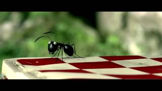 Nonton Minuscule  Valley Of The Lost Ants   2013  Trailer Film Subtitle Indonesia Streaming Movie Download