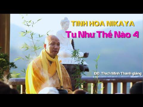 Tinh Hoa NIKAYA - Tu Như Thế Nào 4 - ĐĐ. Thích Minh Thành