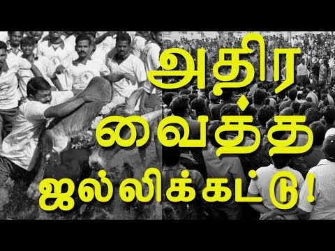 Jallikattu Ban – Protest Videos from All Over Tamilnadu