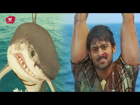 Prabhas Fighting With Shark Popular Scene | #Prabhas | Telugu Movies | Telugu Videos