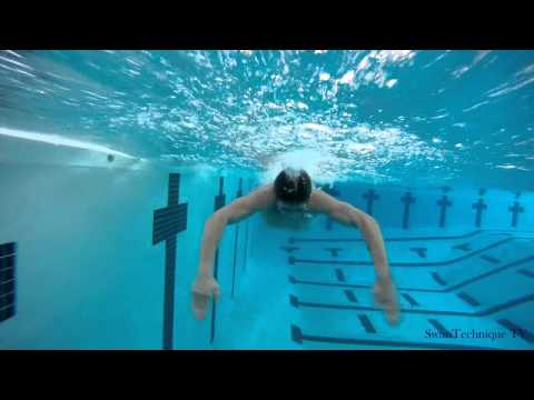 technique - Butterfly Swimming Technique. Side and front view. Special swimming bonus: http://SwimTechnique.tv/bonus.