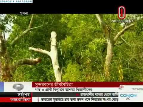 Salinity increases in Sundarbans waters (26-07-2017)