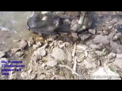 рыбалка на озере цонево в болгарии