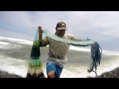 Hombre  Pescador Pesca Soberbio Lenguado con Atarraya