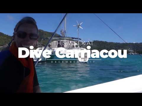 Scuba Diving Carriacou: Sisters Rocks