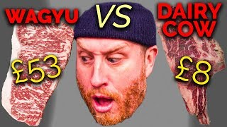 £53 Wagyu Steak  Vs  £8 Old Retired Dairy Cow by Food Busker