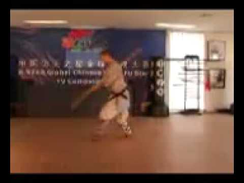 Learn Shaolin Long Stick Form 4