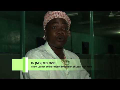 TILAPIA & CATFISH BREEDING TECHNOLOGY IN NIGERIA