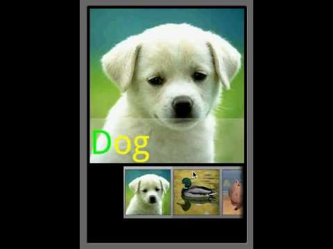 Video of Animal Sounds & Ringtones