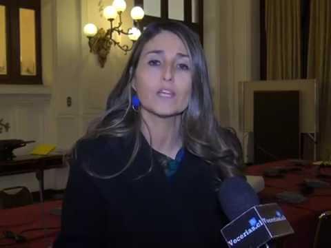 Diputada Nogueira en comisión del Sename cuestionó efectividad del Defensor de la Niñez