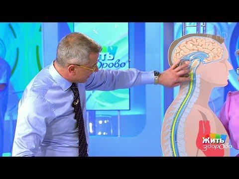 Жить здорово Жидкости нашего тела: ликвор. Как «промыть» мозги (11.07.2018) - DomaVideo.Ru