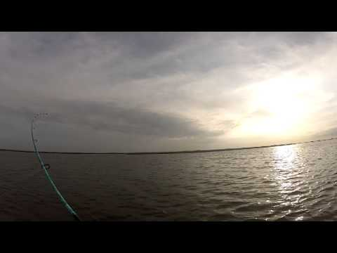 Back to Back Speckled Trout – LA Nov 2012