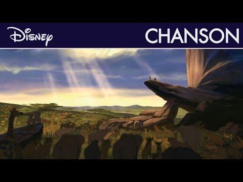 Le Roi Lion - L'histoire de la vie I Disney