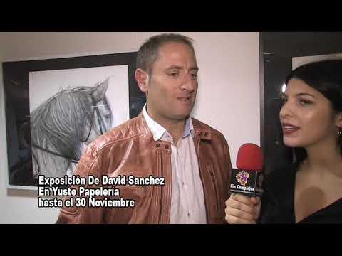 EXPOSICION CUADROS DAVID SANCHEZ