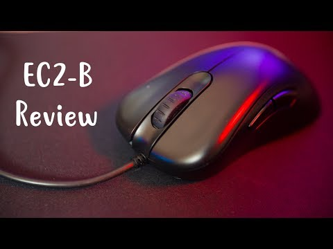 Zowie EC2B Review  a Zowie with a 3360? Yes Please!