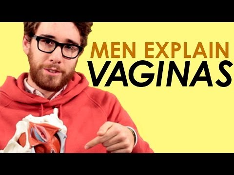 Men Explain The Vagina