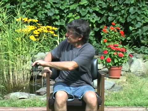 WEIGHT REDUCTION with Chair Exercises