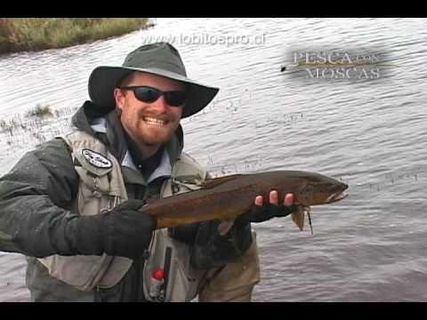 Pesca con Moscas Capitulo # 2 Coyhaique