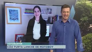 Cachorro 'furta' lanche de motoboy em Votorantim
