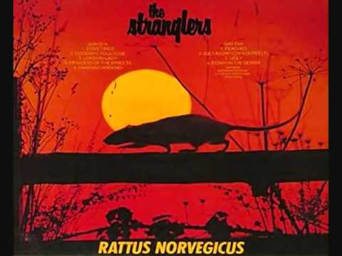 Tekst piosenki The Stranglers - Down In The Sewer po polsku