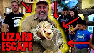 *UNEXPECTED ENDING* Hungry Lizard Gets Loose When Eggs Go Bad by Prehistoric Pets TV