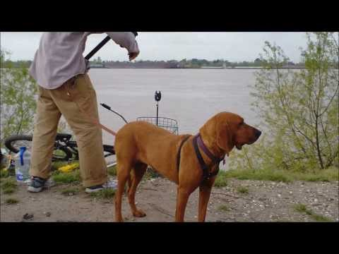 Mississippi River morning fishing time lapse