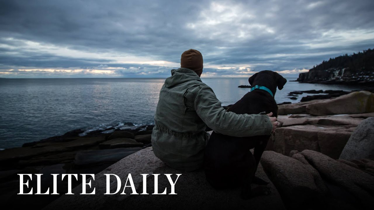 This US Veteran Is Taking His Terminally-Ill Dog On One Last Road Trip