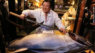This $117K Endangered Tuna Will Make Some Expensive Sushi - Newsy