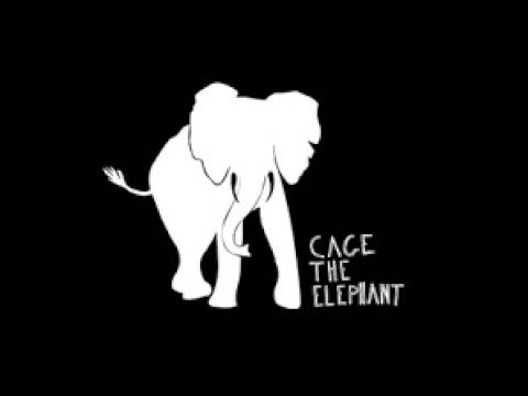 Ain't No Rest For The Wicked By Cage The Elephant |Lyrics|