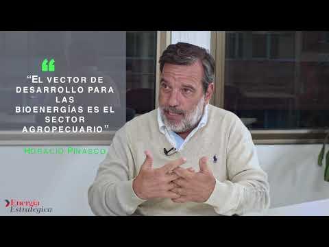 """""""El vector de desarrollo para las bioenergías es el sector agropecuario"""""""