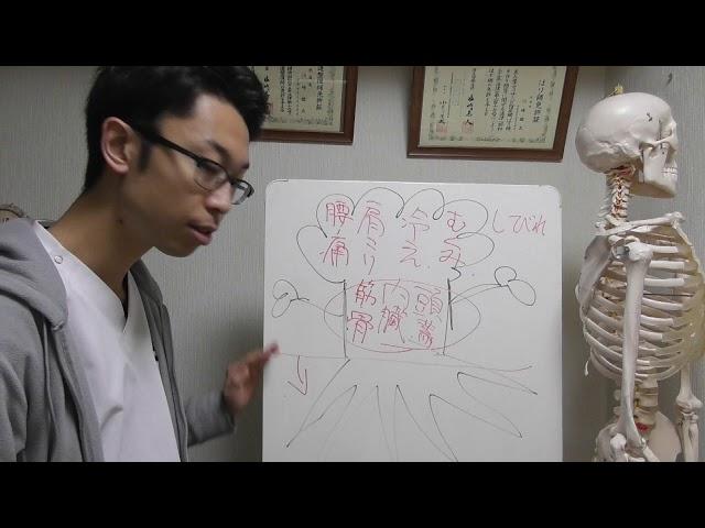体質改善を始める前に知っておくべきこと 札幌 整体 腰痛