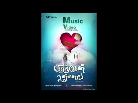 Pirinthen Unnaiye   Tamil Love Breakup   Album Song