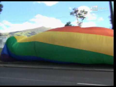 "Comunidad GLBTI ""Silueta X"" acepta ir a consulta popular por matrimonio igualitario"
