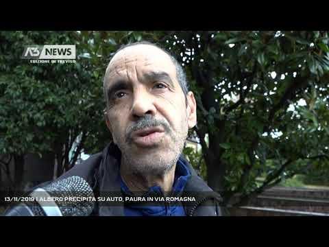 13/11/2019 | ALBERO PRECIPITA SU AUTO, PAURA IN VIA ROMAGNA