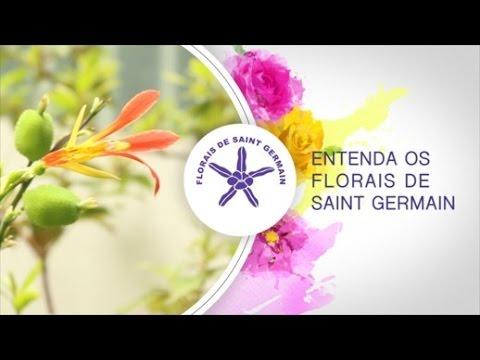 O que são Essências Florais? Florais de Saint Germain (Talita Margonari Lazzuri)