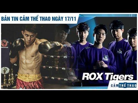 Bản tin Cảm Thể Thao 17/11 | Chủ nhà SEA Games làm khó Duy Nhất, ROX Tigers 2016 tái hợp?