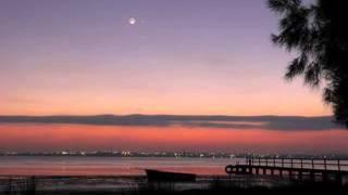 【作業用BGM】 月明かりと心寂しさとエレクトロニカ