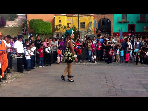 Danza del Torito de Silao Gto La Cacahuata 2014