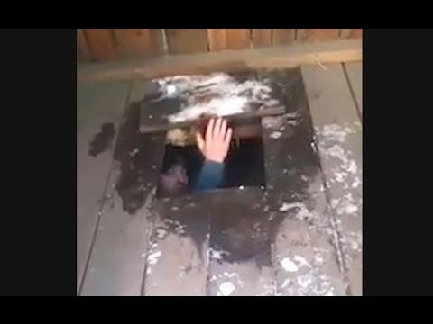 Водитель Лексуса провалился в туалет после ДТП - DomaVideo.Ru