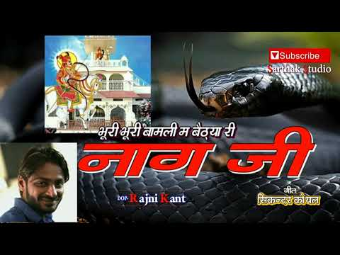 Video तेजाजी की बिंदोरी l एक बार देखो l Sarthak studio & Team Raipura 9694625050 download in MP3, 3GP, MP4, WEBM, AVI, FLV January 2017