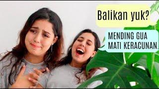 Video Chat Mantan TER-SAVAGE pt. 2!! MP3, 3GP, MP4, WEBM, AVI, FLV Juni 2018