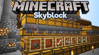Starting an Epic Storage Sorter! • Minecraft 1.15 Skyblock (Tutorial Let's Play) [Part 29]