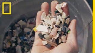 Video Transforming Ocean Trash Into Beautiful Art | Short Film Showcase MP3, 3GP, MP4, WEBM, AVI, FLV Januari 2019